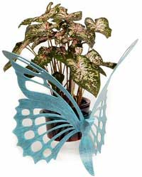 Cricket Forge Butterfly Plant Holder