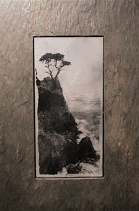 Sierra Slate Images Panoramic Ocean Cypress